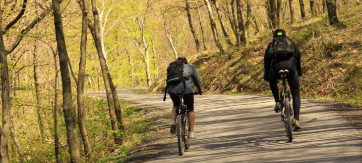 Biciklitúra Aradra