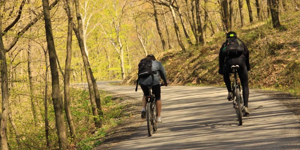 Aradi kerékpártúra